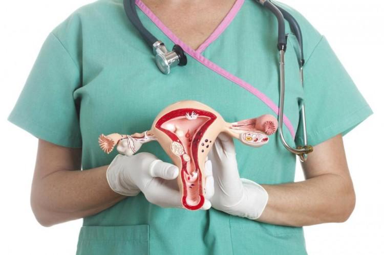 Лечение патологии шейки матки в клинике «Эндокрин медикал»
