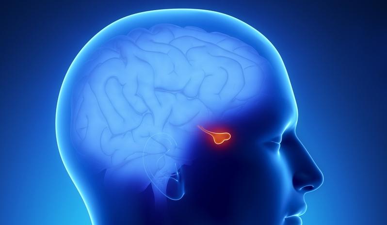 """Клиника """"Эндокрин медикал"""": эффективное лечение Пангипопитуитаризма"""