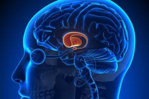 Гипоталамический синдром - виды, симптомы, лечение в клинике