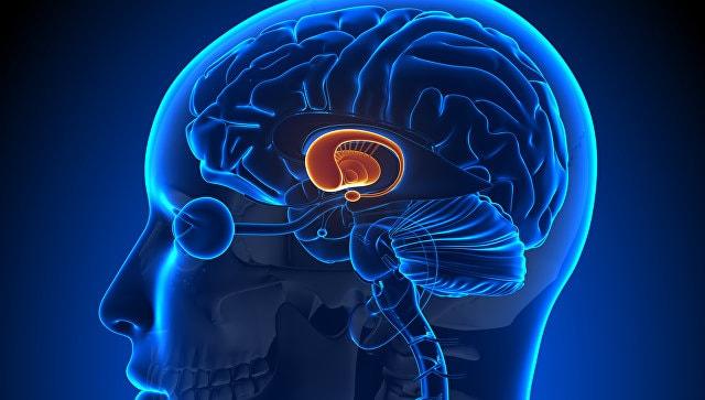 """Гипоталамический синдром - виды, симптомы, лечение в клинике """"Энодкрин Медикал"""""""