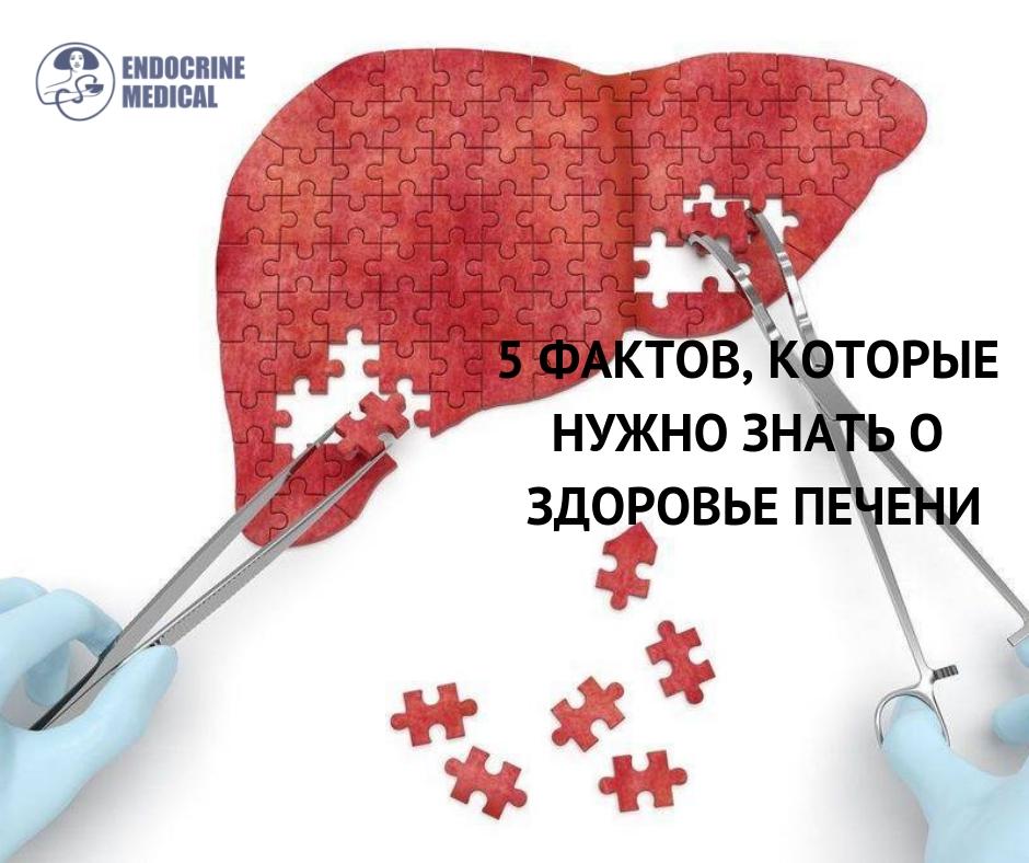 Заболевания печени может возникнуть тогда, когда человек ведет неправильный образ жизни, много употребляет алкоголь и не делает физические упражнения. 1. Риск разрушения печени значительно повышает алкогольная зависимость. Однако среди других симптомов - избыточный вес. На это также влияют повышенный холестерин, гипертония, диабет 2 типа, резистентность к инсулину, вирусный гепатит. 2. Проблемы с печенью начинаются тогда, когда она становится перегружен. Согласно нормам, в этом органе вообще не должно содержаться жира. Однако злоупотребление алкоголем и калорийными продуктами способствуют накоплению жира. К тому же, человек этих изменений просто не чувствует. В результате здоровые клетки замещаются рубцовыми и возникает цирроз. 3. При повреждения печени боль не чувствуется, так как в этом органе нет нервных окончаний. Симптомы, которые человек испытывает, проявляются на последних стадиях цирроза - слабость, усталость, потеря аппетита. 4. Для того, чтобы понять, человек является в группе риска, необходимо вычислить сколько алкоголя потребляет человек и измерить объем талии. Рекомендуемая норма алкогольных напитков в день - 2-3 порции (порция - это 100 мл вина или шампанского, или 285 мл пива, или 30 мл крепких напитков). Если человек входит в эту группу - риск заболеваний печени возрастает. 5. Если объем талии более 88сантиментрив, это тоже проблема. Для того, что избежать проблем с печенью, необходимо реже употреблять алкоголь, не превышать его рекомендуемые нормы, похудеть и выполнять регулярные физические нагрузки.